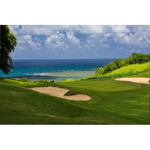 Princeville Links, 2017